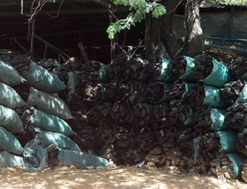 Press Release on Resurgence of Charcoal Production and The Export off the Coast of Somalia